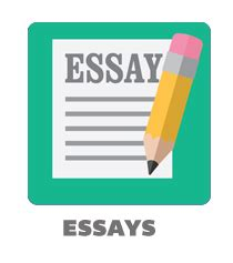 Essay writing conclusion example